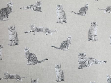 Leinendruck 140cm Katzen