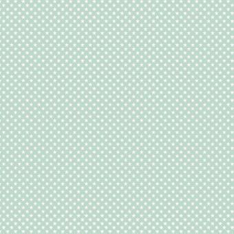 BW-Druck Mini STARS mint
