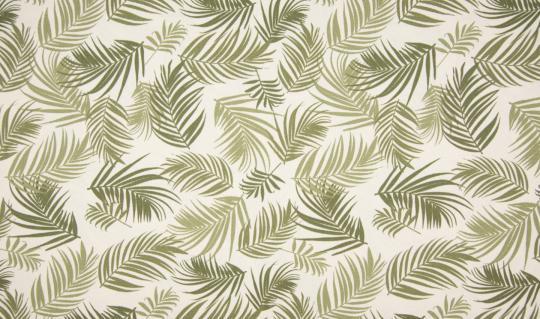 Canvas Druck Blätter khaki