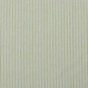 Popeline Streifen oliv   AUSVERKAUFT
