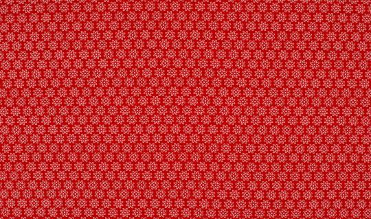 BW-Jersey  Blume rot