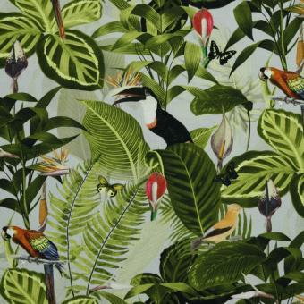 Canvas bedruckt Blätter und Papageien