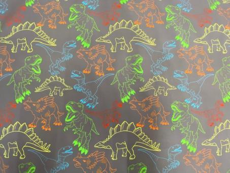 Softshell Dinos grau-grün-gelb-rot nur solange Vorrat reicht!!